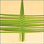 Photograph showing step 3 of how to make a woven bulrush mat